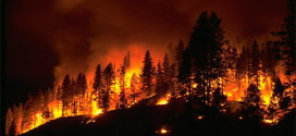 2015 Cal Fire: Drought & Fire Warning Presentation